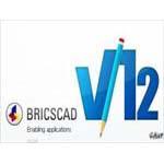 Bricscad 12